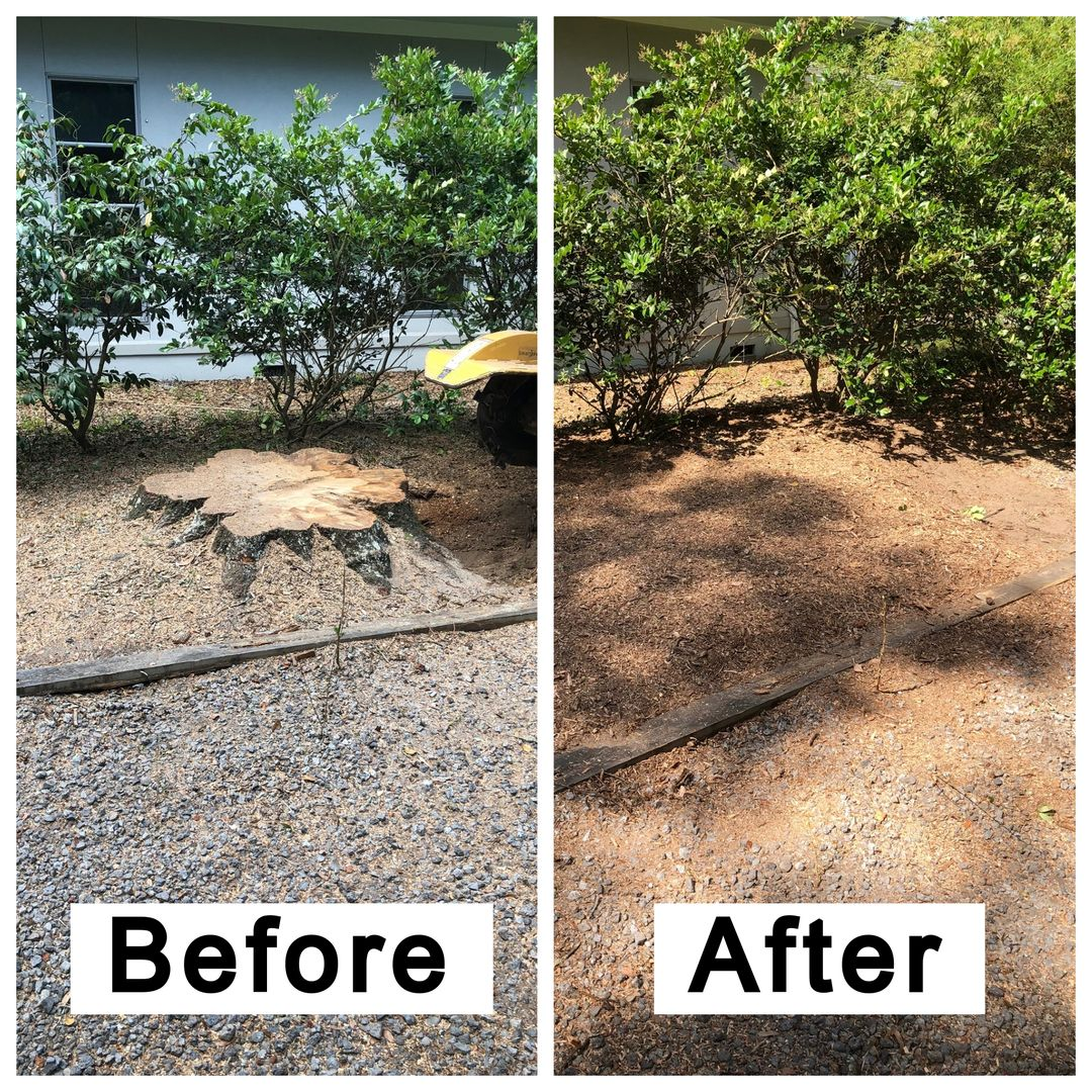 Coastal Stump Grinding LLC - Before & After 10