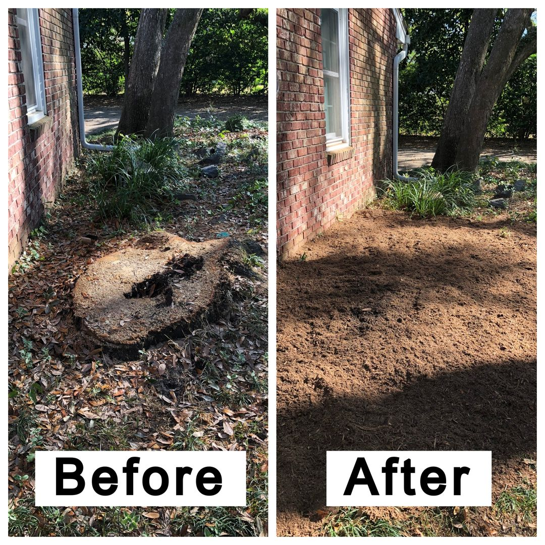 Coastal Stump Grinding LLC - Before & After 9