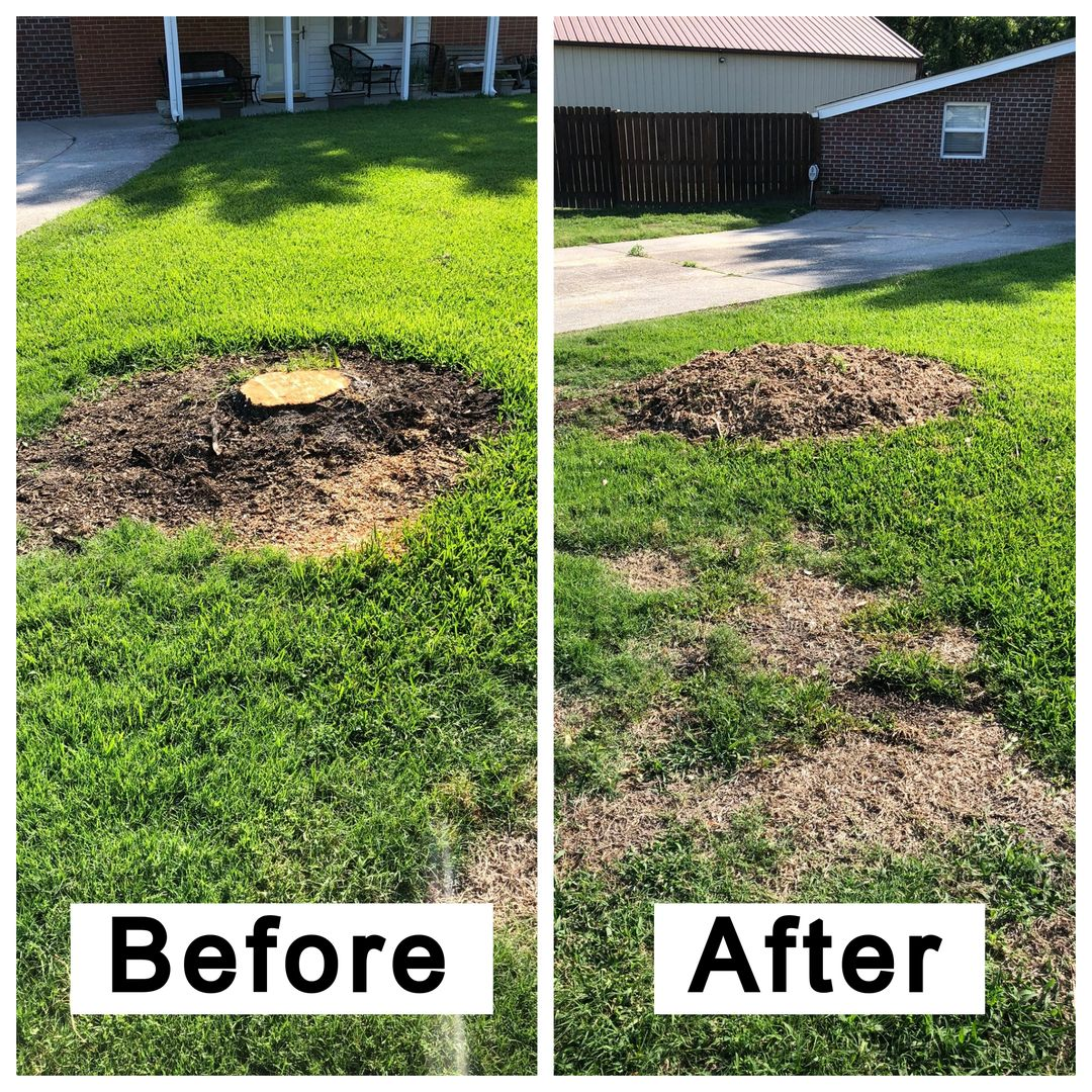 Coastal Stump Grinding LLC - Before & After 8