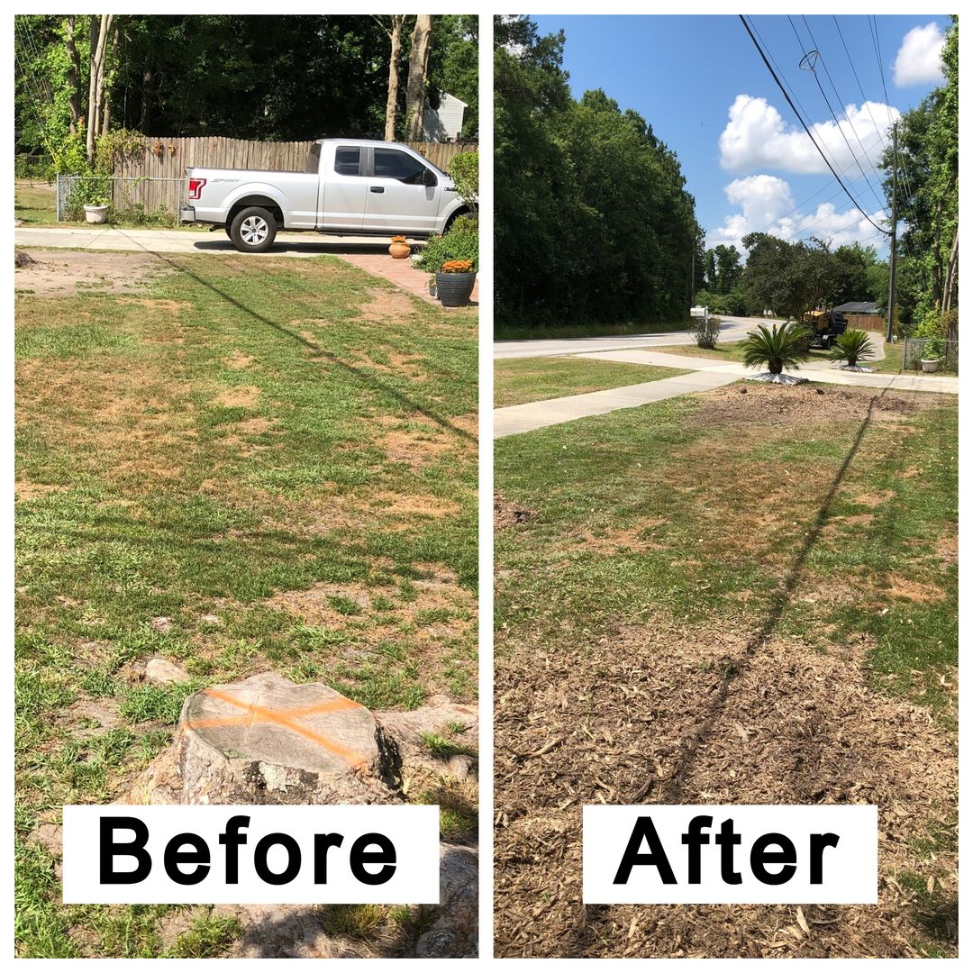 Coastal Stump Grinding LLC - Before & After 7