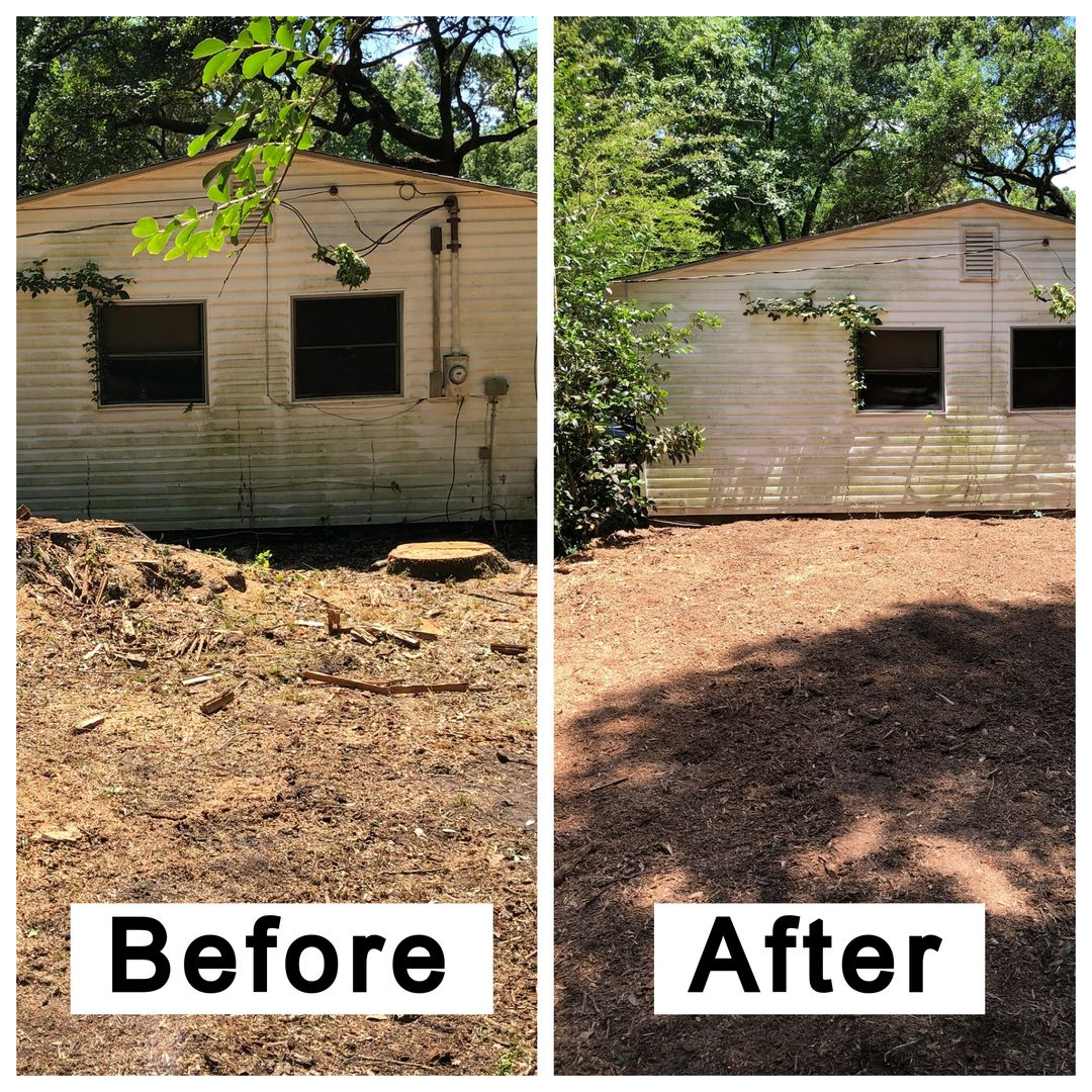 Coastal Stump Grinding LLC - Before & After 5