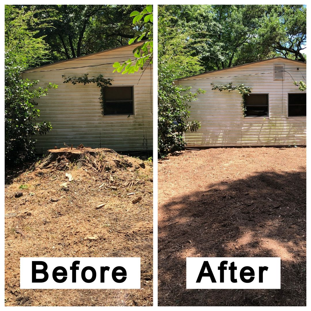 Coastal Stump Grinding LLC - Before & After 3