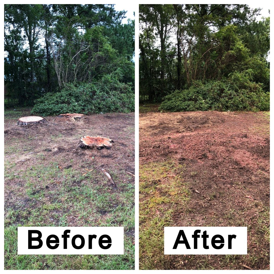 Coastal Stump Grinding LLC - Before & After 2